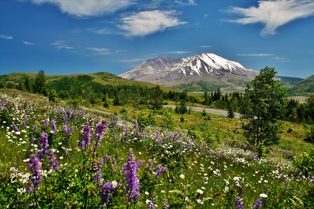 Mt. Saint Helens 2,549m