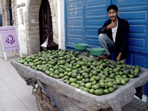 Avocado vendor
