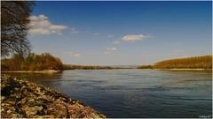 dnes na brehu Dunaja...