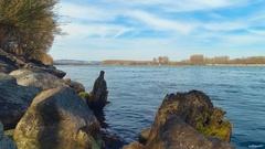 cez Dunaj...