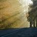 Kouzelná silnice
