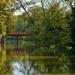 Můstek v parku