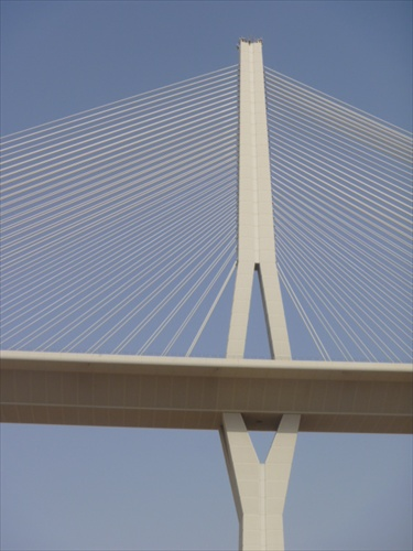 Hanging Bridge Riyadh 2