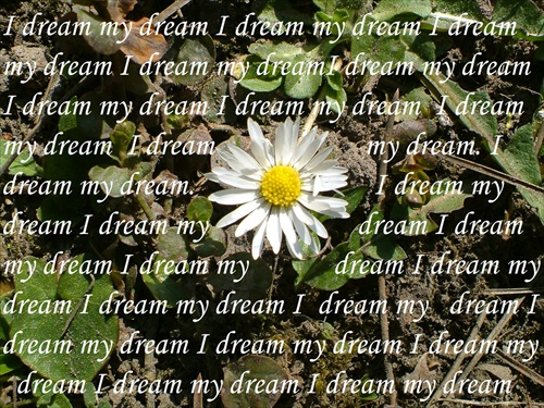 ♥I dream my dream♥