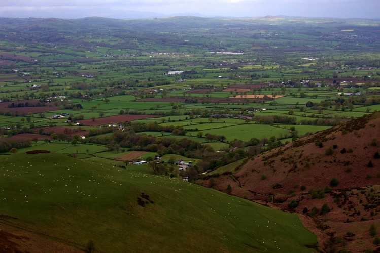 Countryside ( Wales )