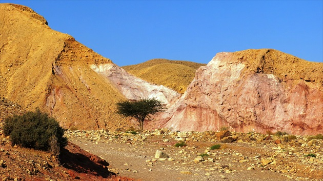 Red Canyon - Eilat Mountains