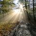 .. hra svetla a hmly ...