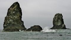 Na pobreží Tichého oceánu...